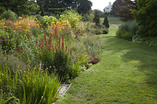 The Pond Garden borders